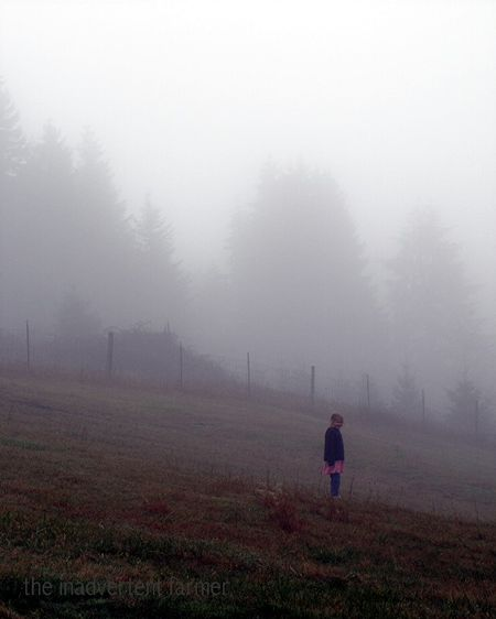 Mist7