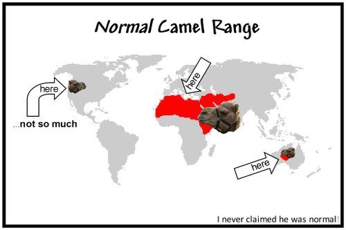 Camelrange