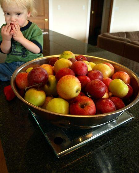 Applesauce4