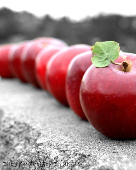 Appleline