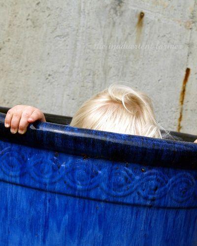Blue pot2
