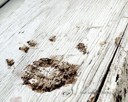 Muddy14