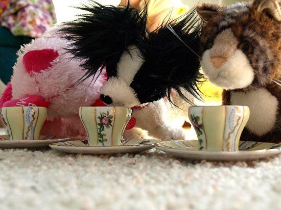 Tea party2