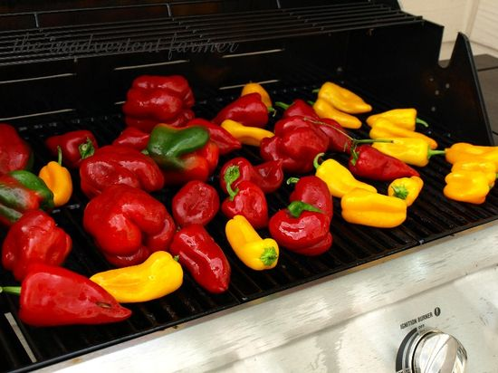 Roasted peppers1