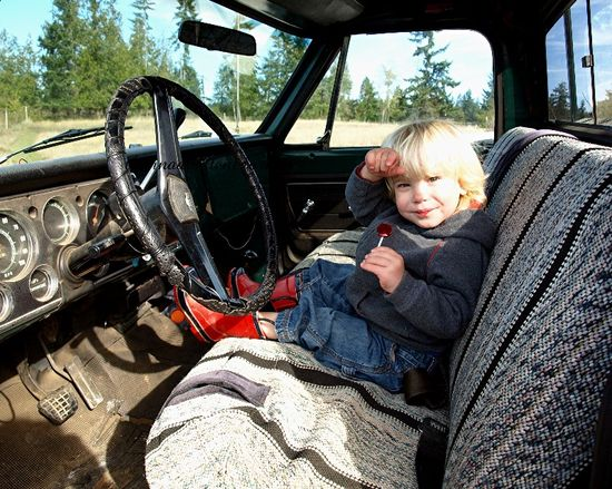 Interior original 1972 chevy pickup truck green chevorlet farm brush