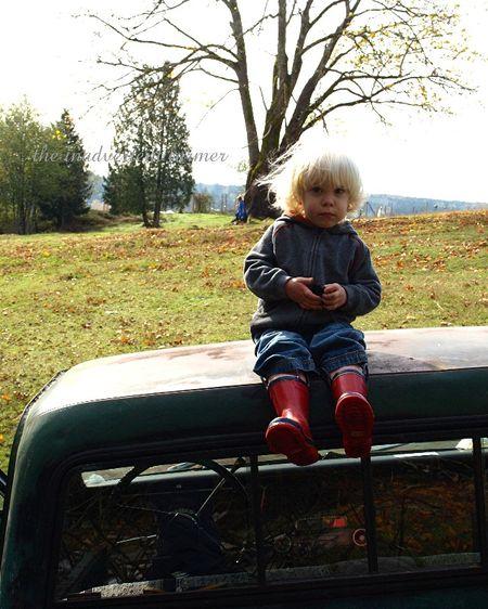Chevy 1972 pickup truck original boy blond brush