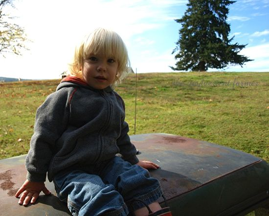 Chevy truck 1972 cab boy blond farm brush