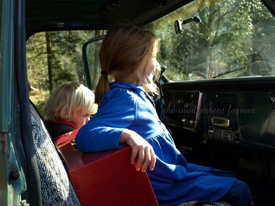 1972 chevy pick up truck original kids farm