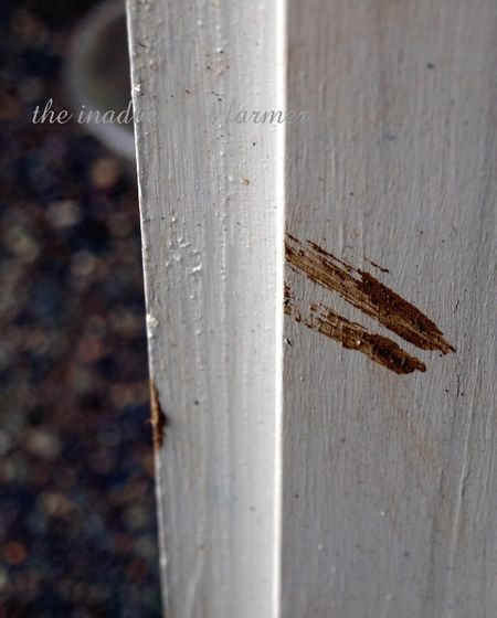 Muddy handprint door jam