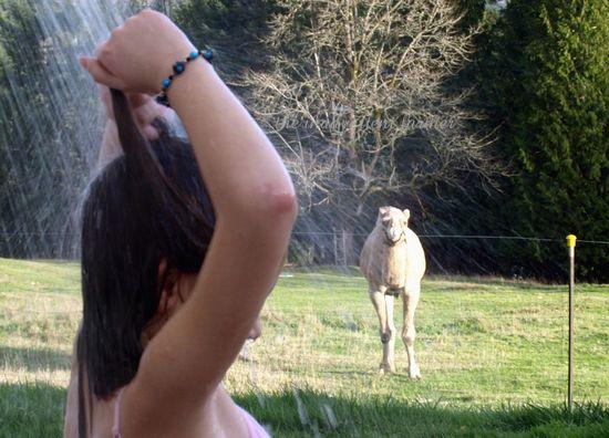Outdoor shower camel spray wet kid
