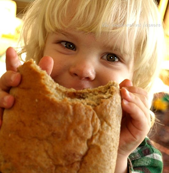 Bread toddle boy blond