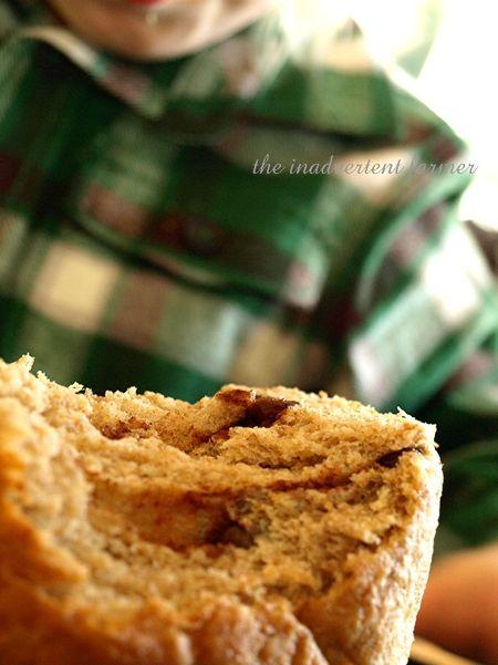 Bread raisin cinnamon whole wheat organic