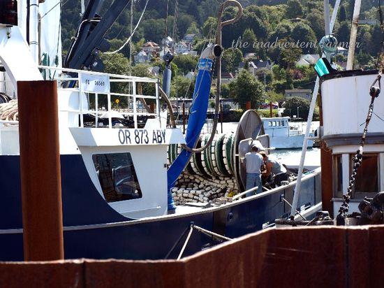 Ship fishing fleet work astoria oregon