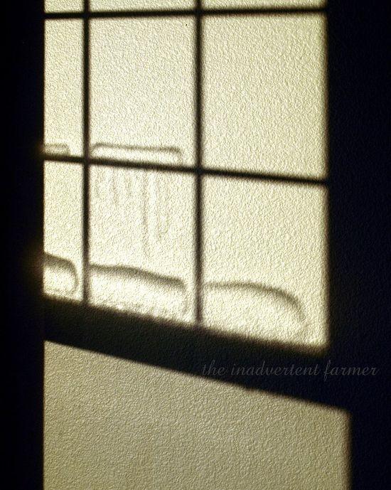 Winter window shadow wall