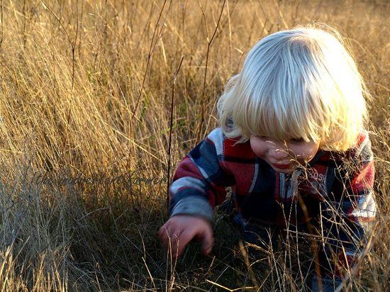 Little boy crawl grass