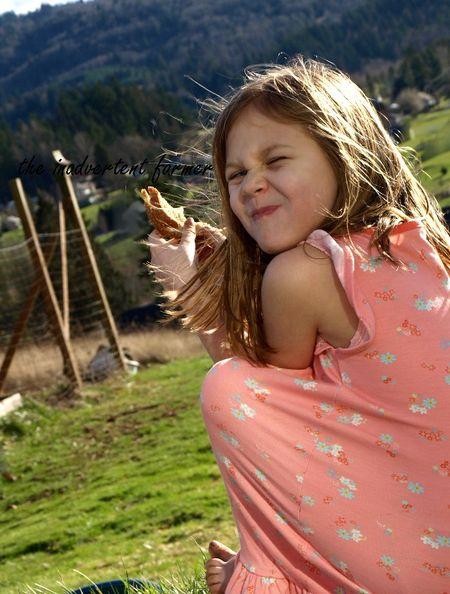 Little girl eat lunch farm