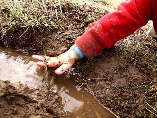 Mud hay field9