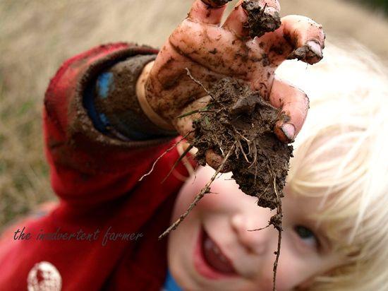 Mud hay field5