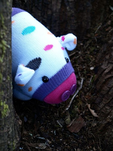 Sock monster pig ground