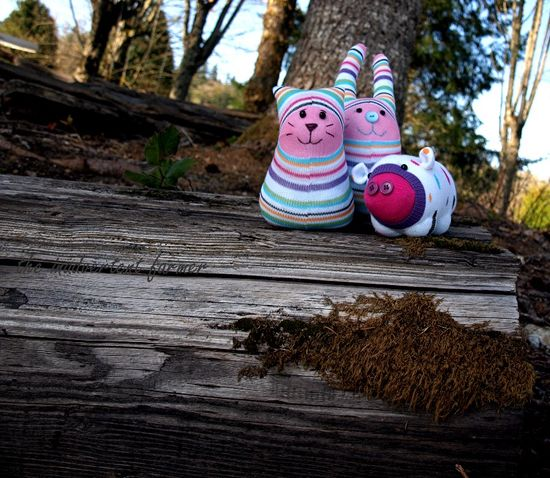 Sock monster on log moss woods