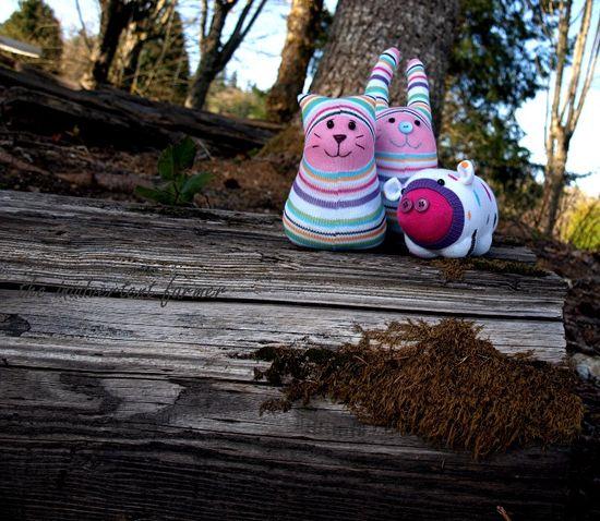 Sock monster on log moss woods