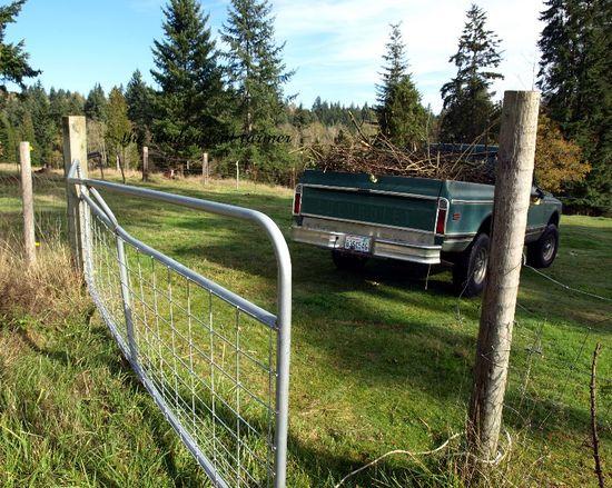 1972 ton chevy green pickup farm truck brush