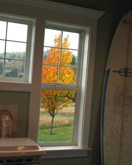Surf board pear tree autumn fall color fire