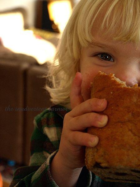 Baby boy eat whole wheat bread