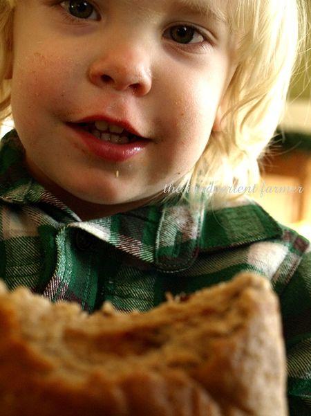 Toddler boy bread whle wheat raisin