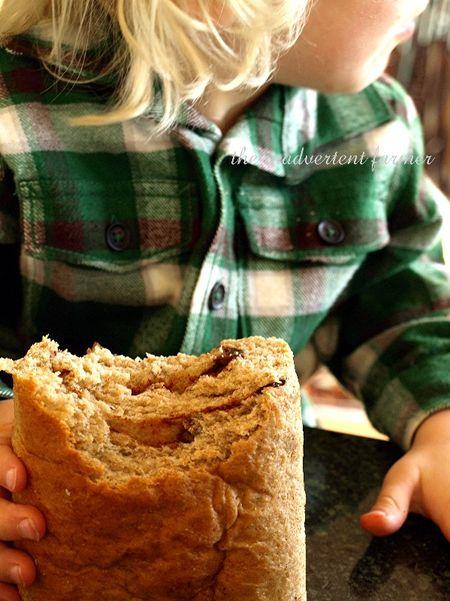 Raisin cinnamon whole wheat blond toddler boy