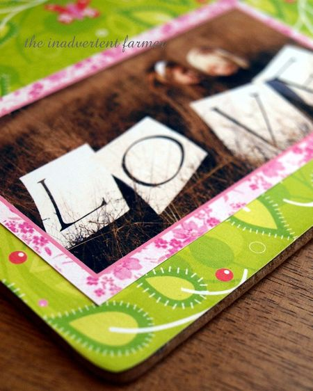 Love gift green pink photo