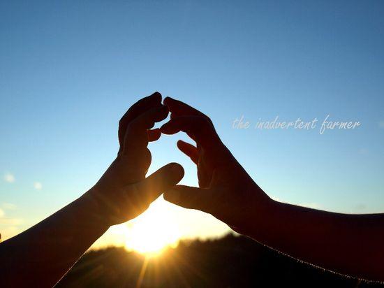 Brother sister hands sunset baby girl boy touch love