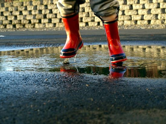 Puddle jumping red boots little boy rain child