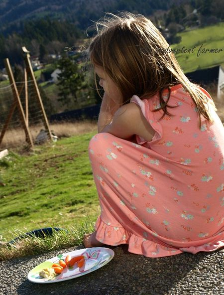 Little girl farm lunch
