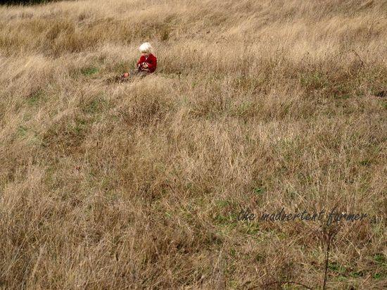 Mud hay field
