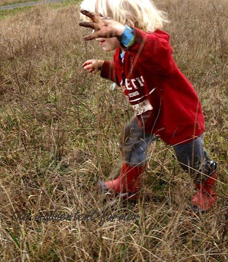 Mud hay field8