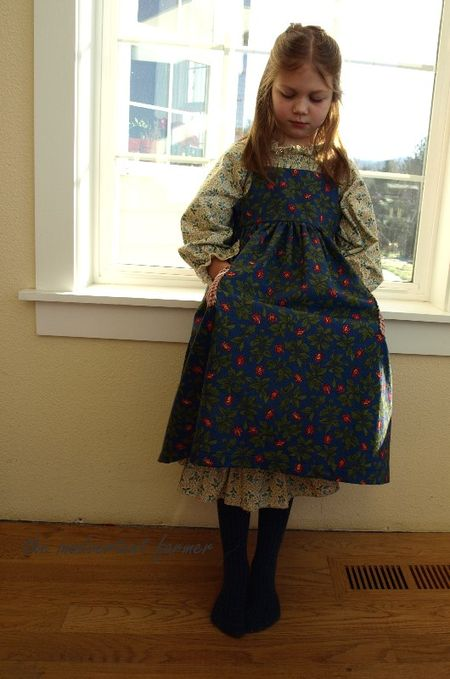 Little prairie dress blue red pockets