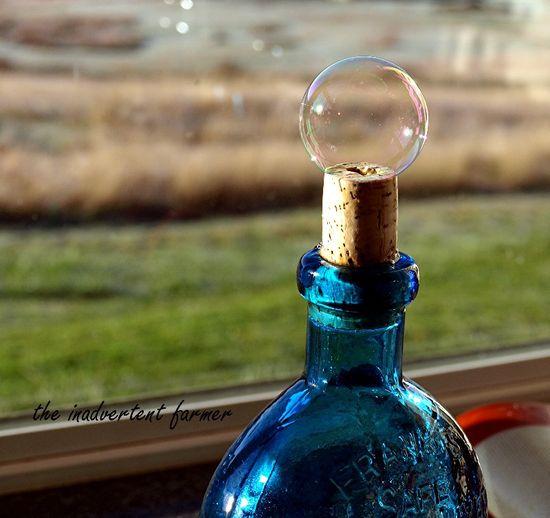 Blue bottle bubble