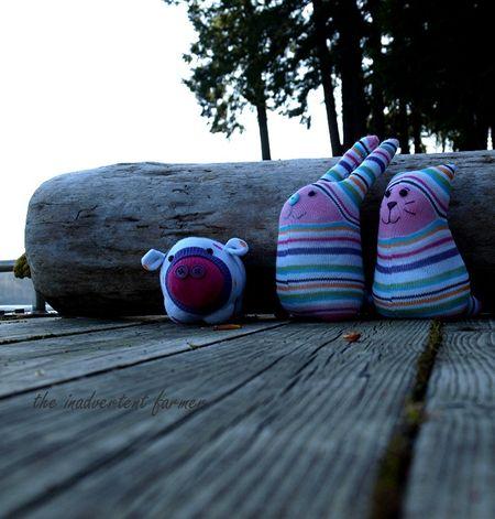 Sock monster lake dock log