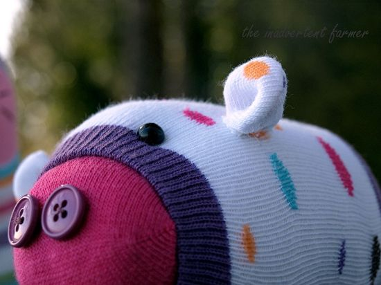 Sock monster pig close up dots pink nose