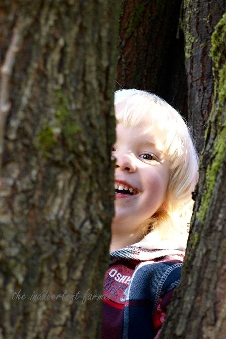 Blond boy climb tree cabin