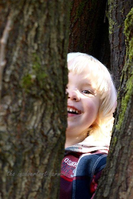 Blond boy climb tree cabin