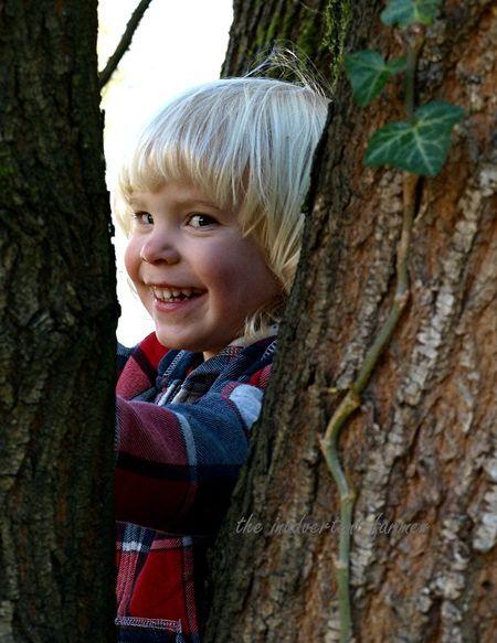 Blond boy climb tree peek