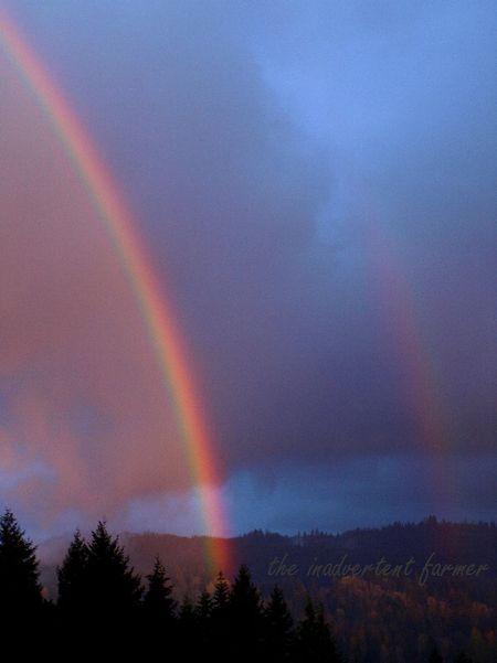 Garden day double rainbow