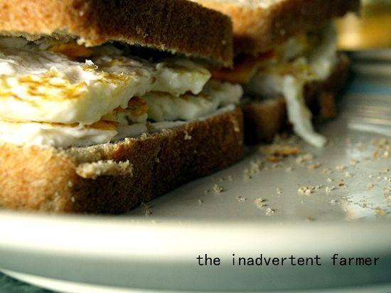 Egg sandwich fried