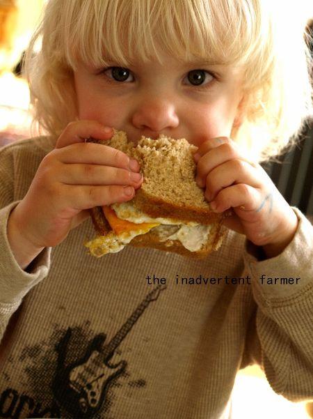 Big kids egg sandwich boy eyes