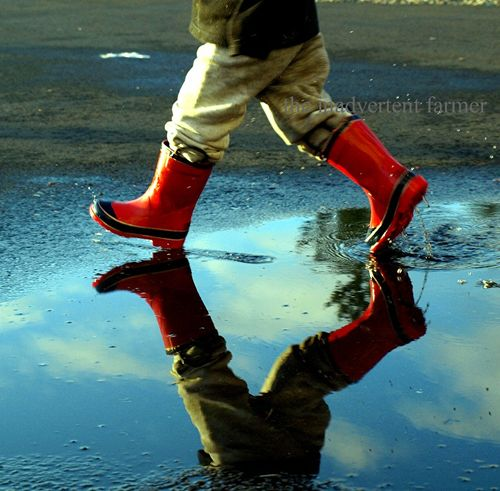 Little boy red boots mud puddle reflection