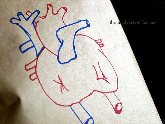Birthday heart sketch