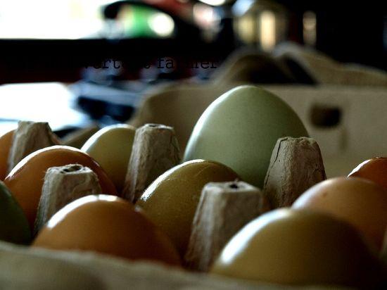 Three eggs carton open