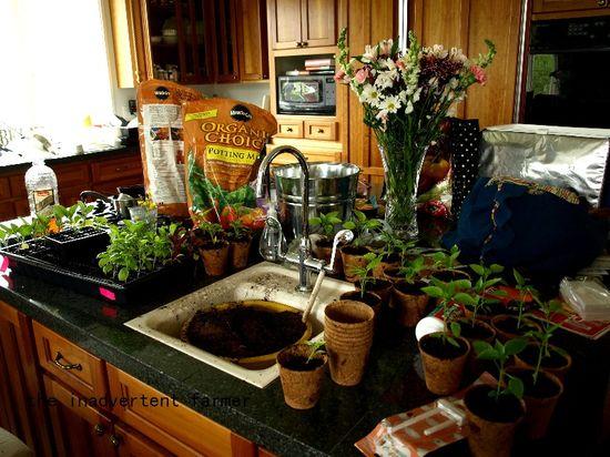 Island kitchen mess